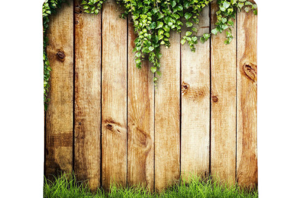 Wood-Fence with Grass
